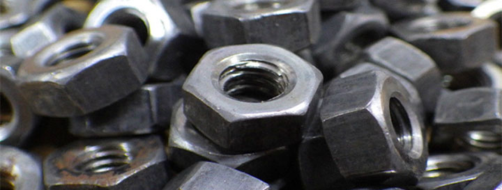 hexagon nut, hexagon nuts, hex nuts, fastener, nut