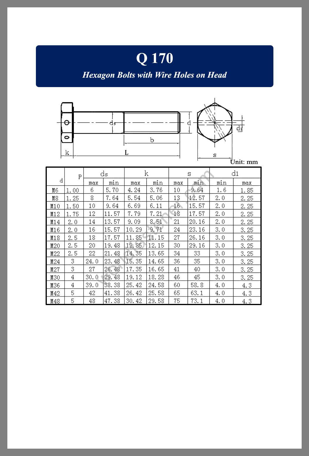 Q170, Q 170 Hexagon Bolts, fastener, screw, bolt, Q bolt, Q Standard Fastener