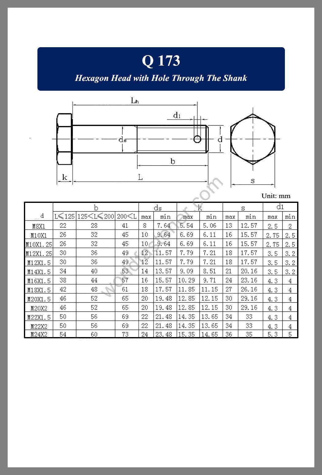 Q173, Q 173 Hexagon Head with Hole Through The Shank, fastener, screw, bolt, Q bolt, Q Standard Fastener